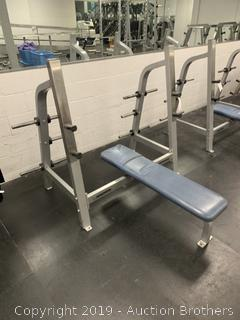 Nautilus Commercial bench press Station