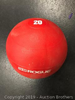 20# Rogue Echo Slam Balls