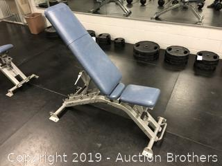 Nautilus Commercial Adjustable Utility / Dumbbell Bench